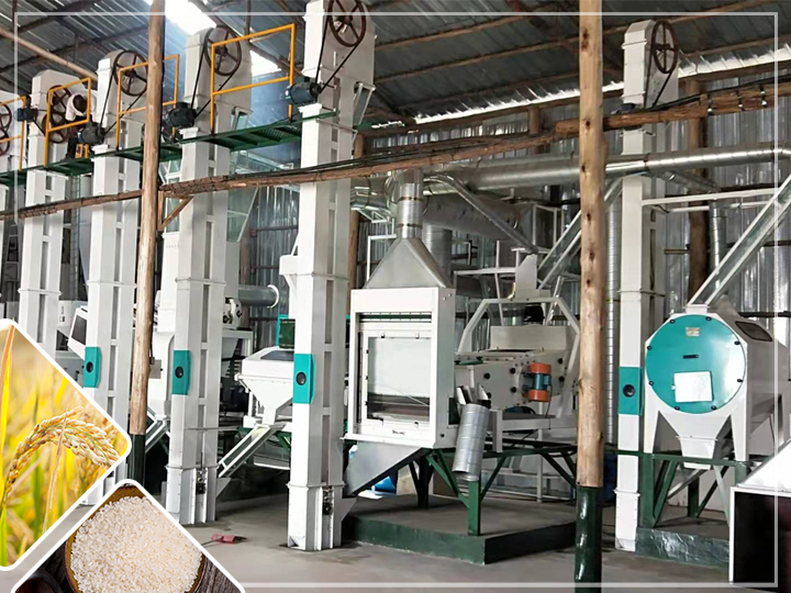 50-60T/D complete rice milling plant
