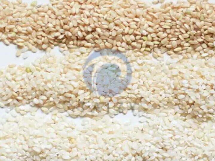 brown rice, germ rice, white rice