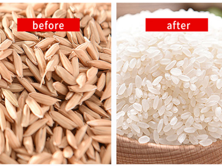 effect-of-rice-milling